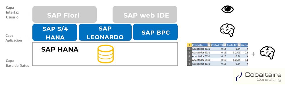 3 Capas de SAP